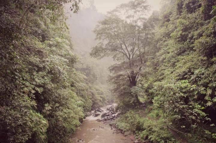 sekumpul-waterfall-trekking-north-bali_6313
