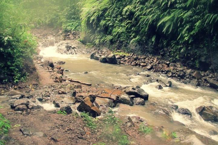 sekumpul-waterfall-trekking-north-bali_6363